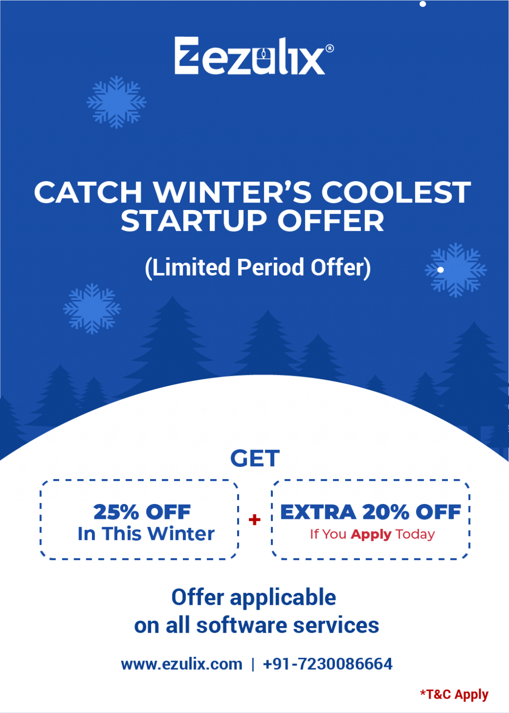 winter sale on software