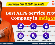 best aeps service provider in India 2021