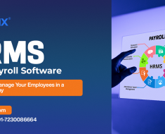HR and Payroll Software for Small Business